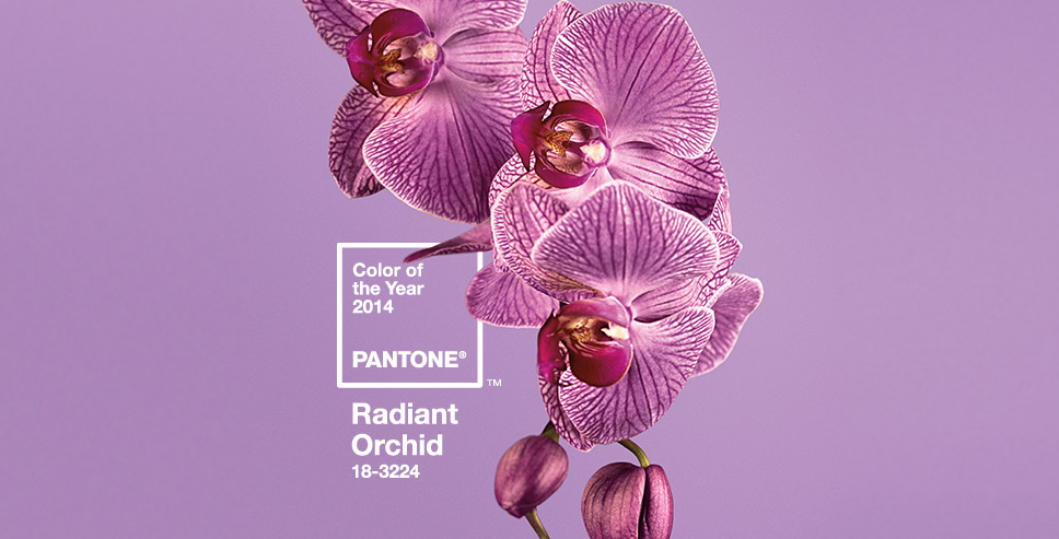 Pantone's Color of 2014, Radiant Orchid 18-3224