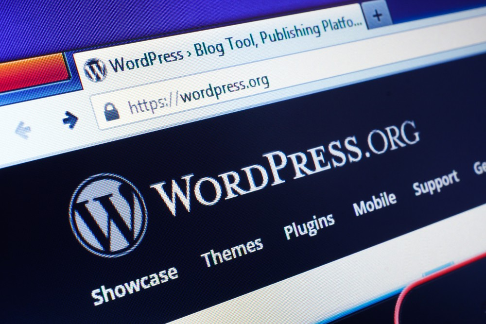 Wordpress. As a developer I often loathe it. As a designer I tolerate it. As a marketer I love it